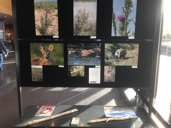 Foto-expositie Hemelrijkse Waard