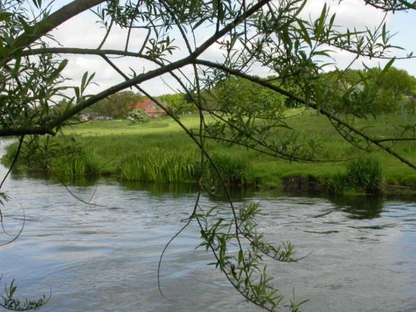 Project Oevergebied de Niers gereed